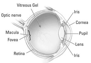 macular-hole1